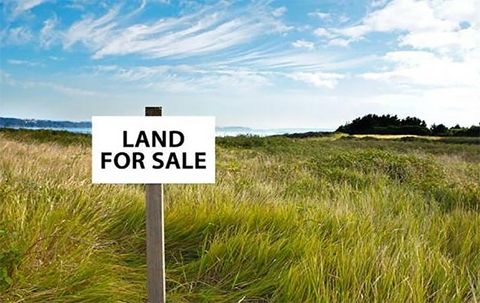 Authority and oligarchs are going to earn $ 208 billon for sale of Ukrainian land, – Oleksandr Klymenko